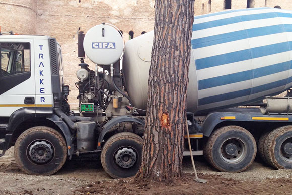Protezione degli alberi nei cantieri